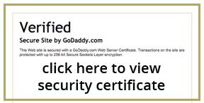 ssl secure online payment
