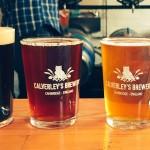 meet the brewer tour cambridge