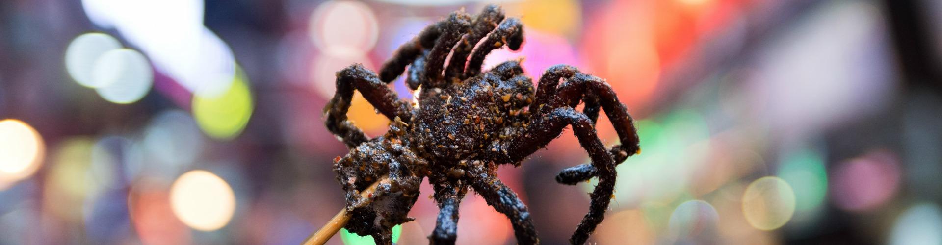 cambridge food tour tarantula